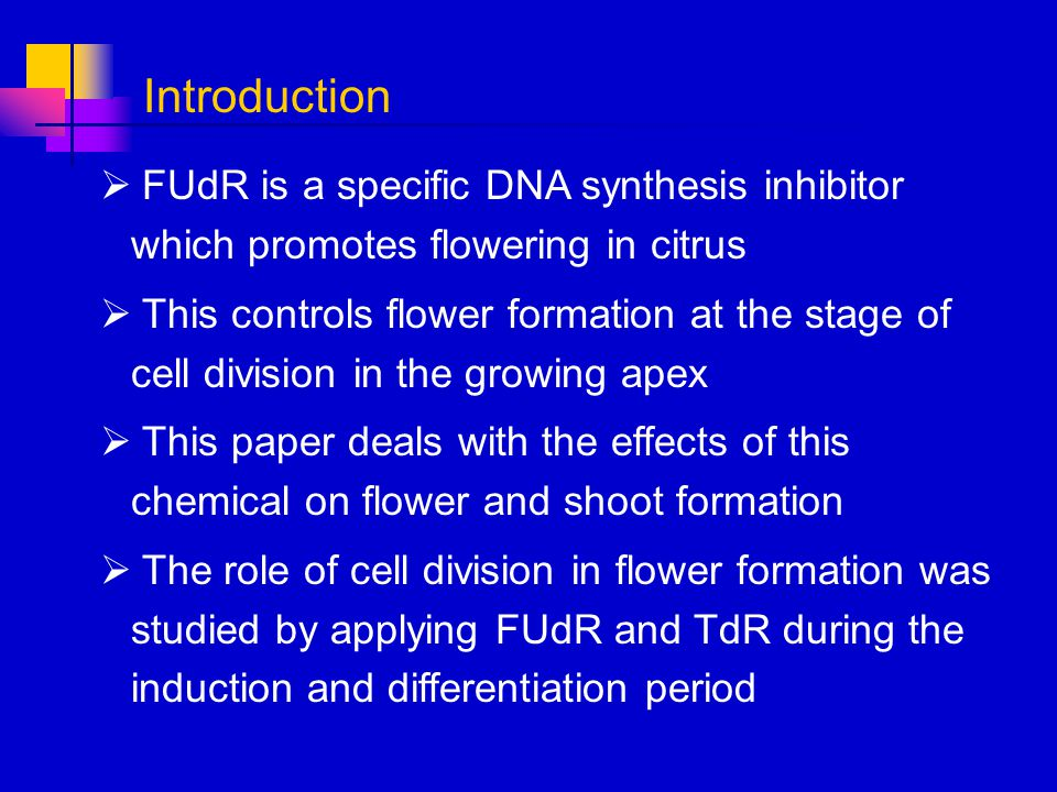 Introduction FUdR is a specific DNA synthesis inhibitor which promotes flowering in citrus.