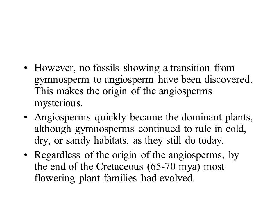 However, no fossils showing a transition from gymnosperm to angiosperm have been discovered. This makes the origin of the angiosperms mysterious.