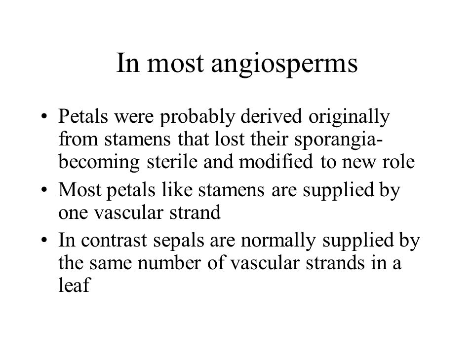In most angiosperms Petals were probably derived originally from stamens that lost their sporangia- becoming sterile and modified to new role.