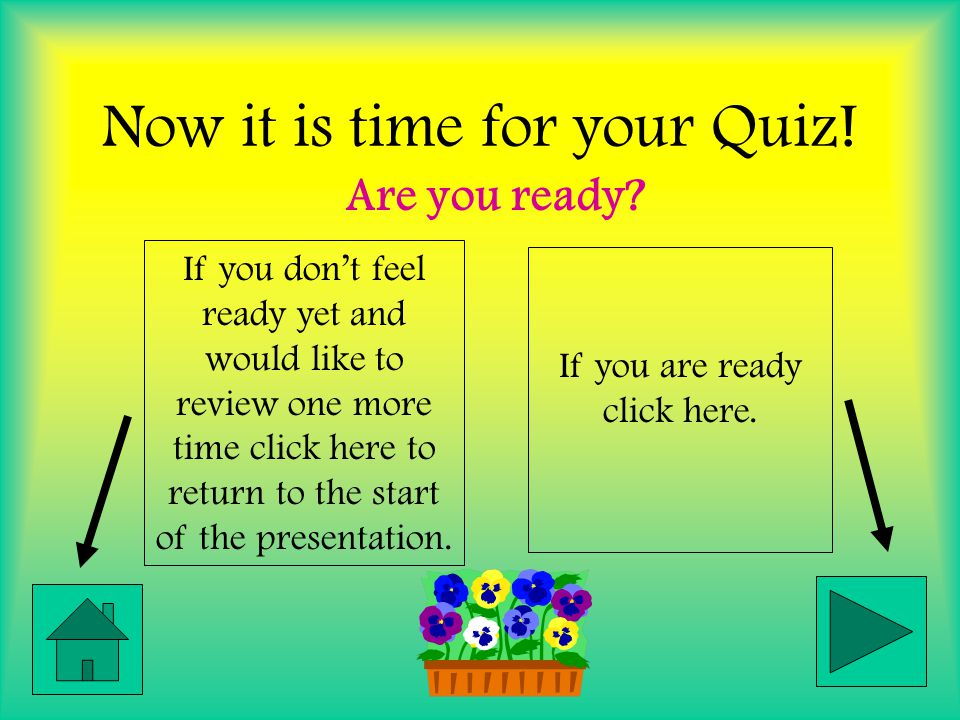 Now it is time for your Quiz!