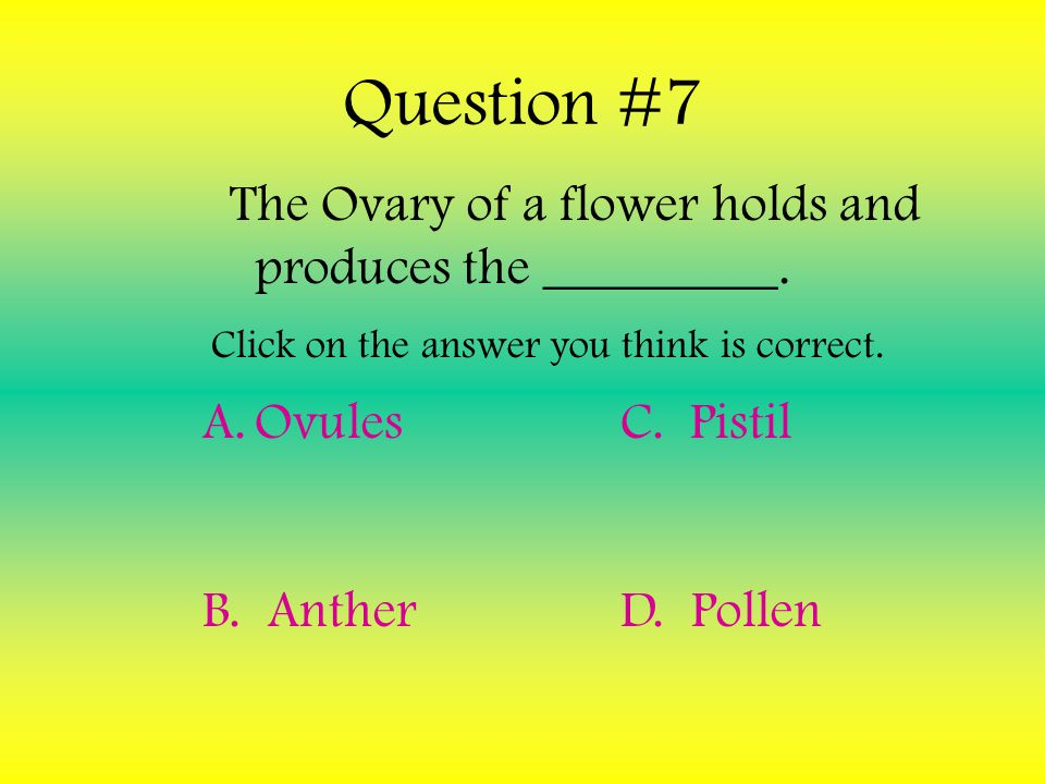 The Ovary of a flower holds and produces the _________.