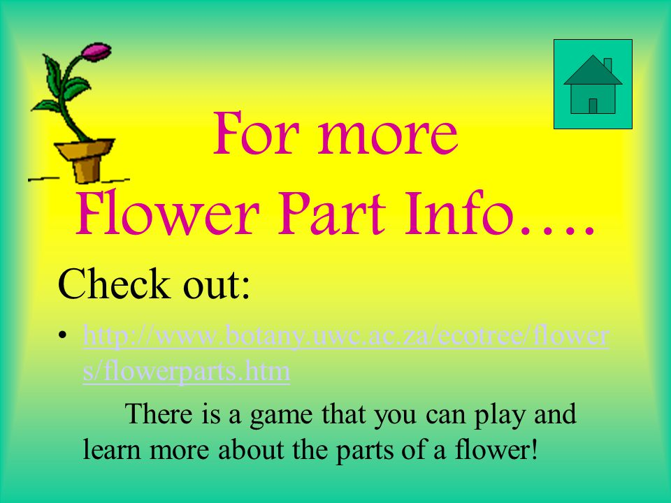 For more Flower Part Info….