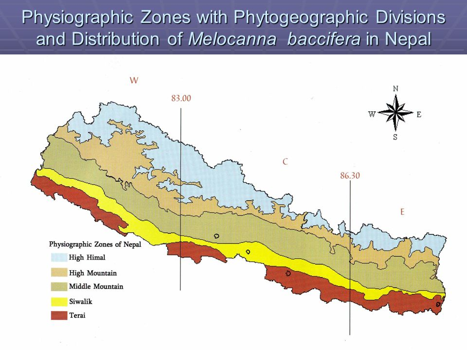 Physiographic Zones with Phytogeographic Divisions and Distribution of Melocanna baccifera in Nepal