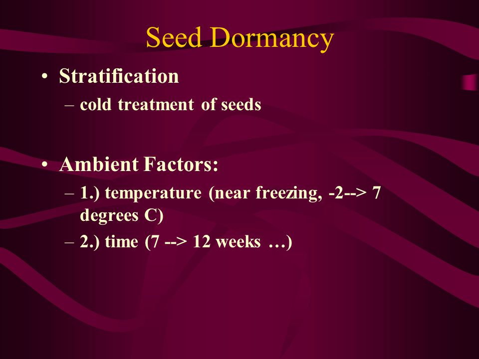 Seed Dormancy Stratification Ambient Factors: cold treatment of seeds