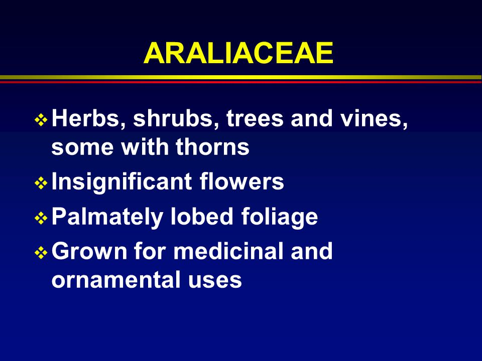 ARALIACEAE Herbs, shrubs, trees and vines, some with thorns