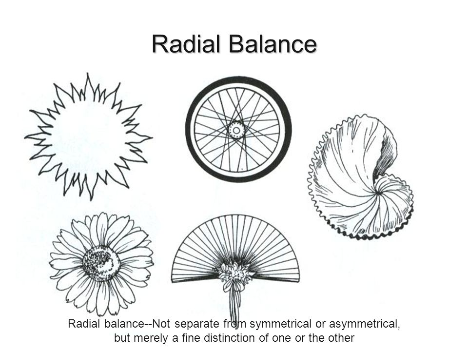Radial Balance Hunter, Norah T., The Art of Floral Design Second Edition Delmar 2000. Radial balance--Not separate from symmetrical or asymmetrical,