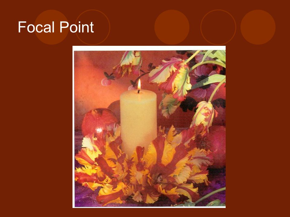 Focal Point Barnes & Noble Books. The New Flower Arranger: Contemporary Approach to Floral Design.