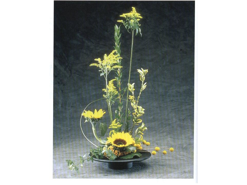 Hunter, Norah T., The Art of Floral Design Second Edition Delmar 2000.