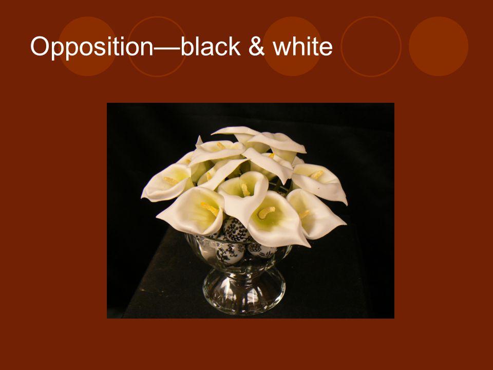 Opposition—black & white