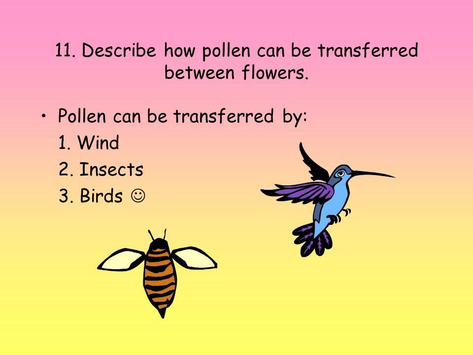 11. Describe how pollen can be transferred between flowers.