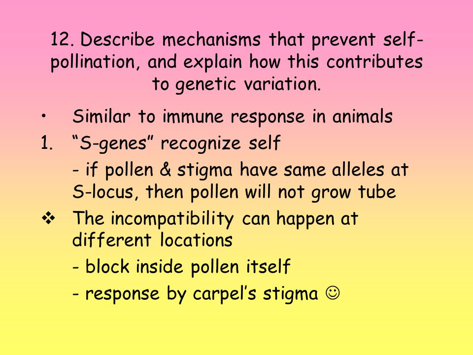 12. Describe mechanisms that prevent self-pollination, and explain how this contributes to genetic variation.