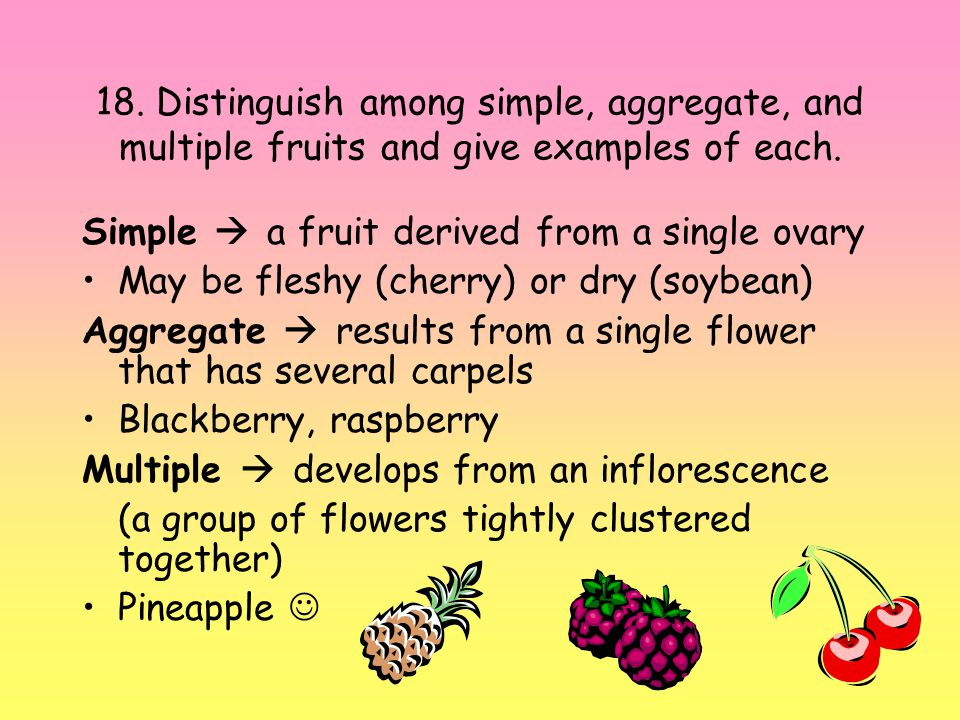 18. Distinguish among simple, aggregate, and multiple fruits and give examples of each.