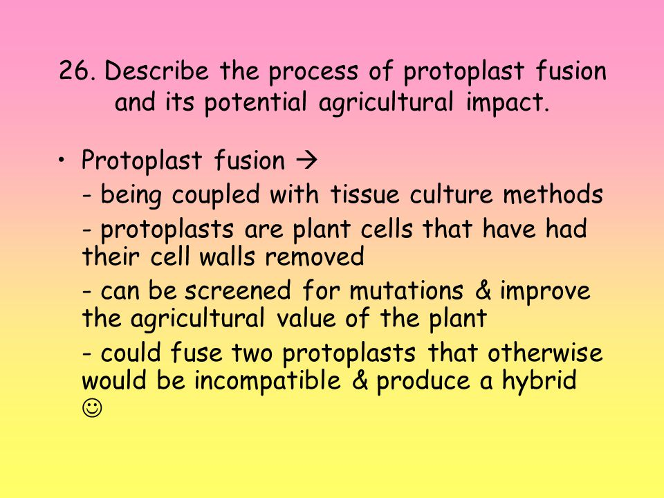 26. Describe the process of protoplast fusion and its potential agricultural impact.