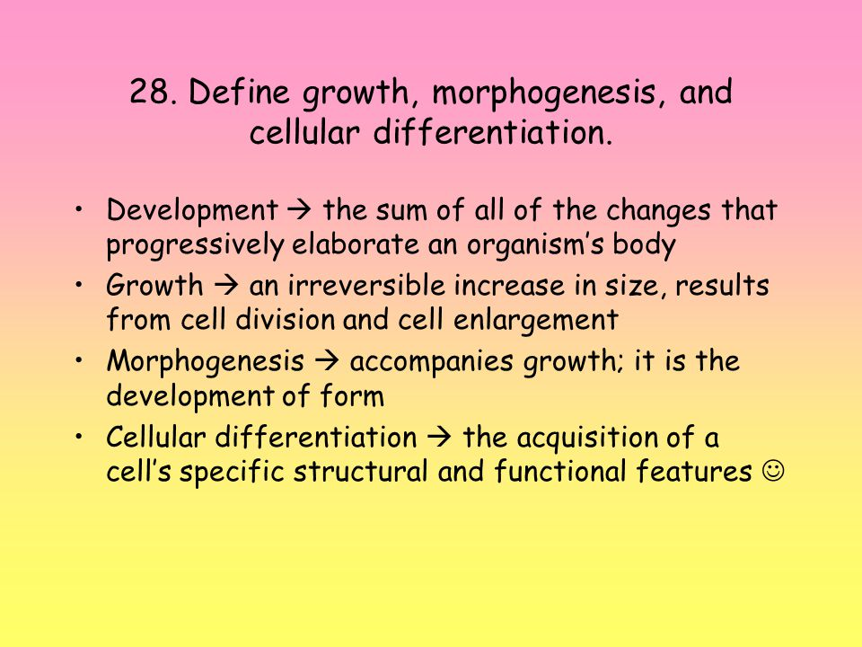 28. Define growth, morphogenesis, and cellular differentiation.