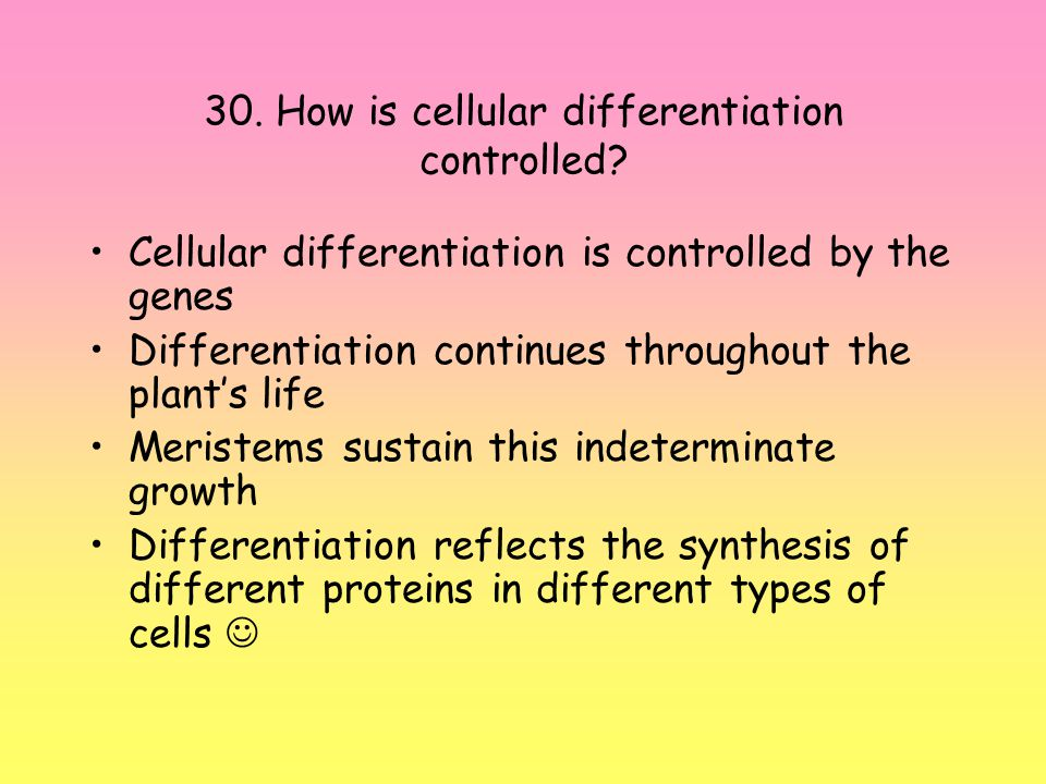 30. How is cellular differentiation controlled