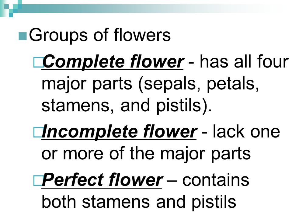 Groups of flowers Complete flower - has all four major parts (sepals, petals, stamens, and pistils).