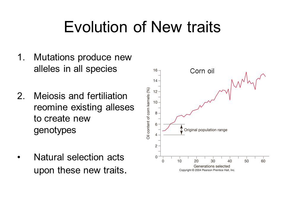 Evolution of New traits