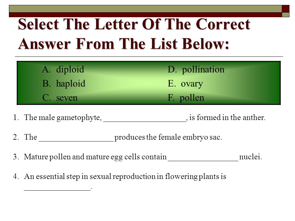 Select The Letter Of The Correct Answer From The List Below: