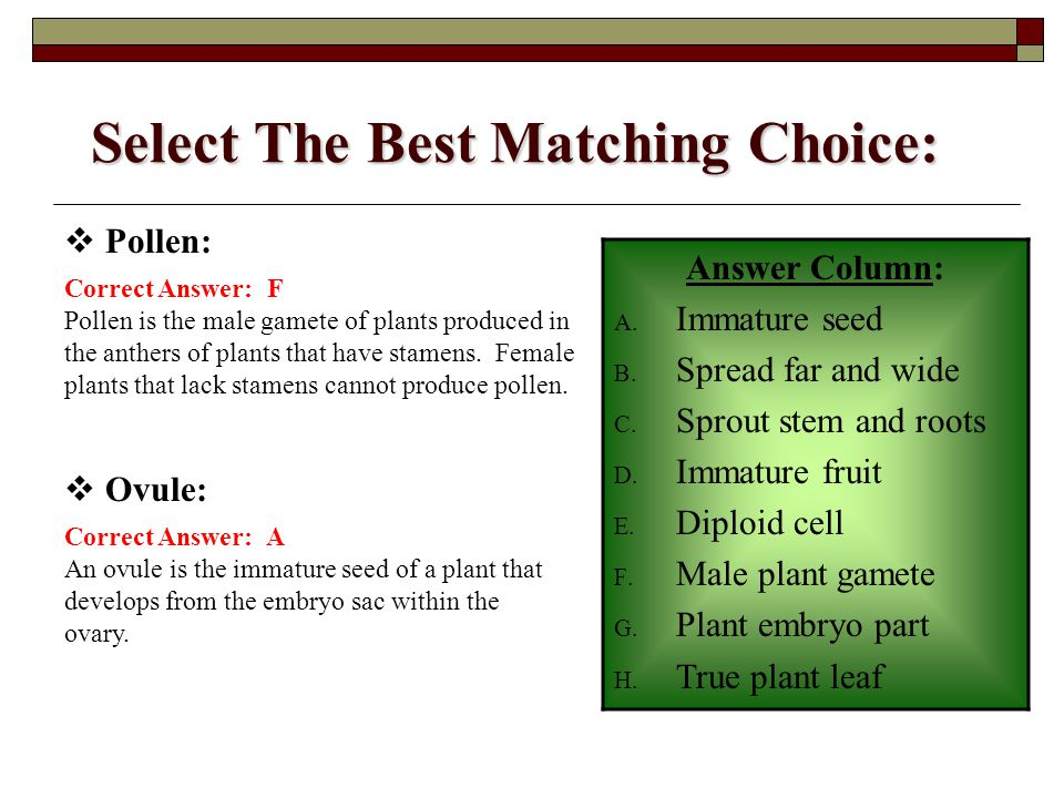 Select The Best Matching Choice: