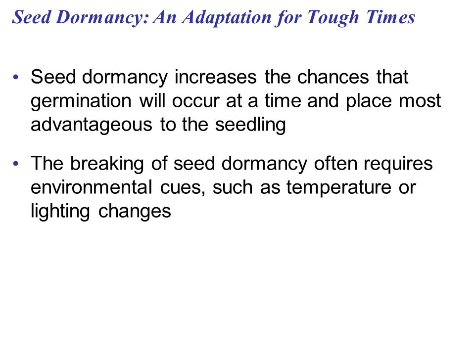 Seed Dormancy: An Adaptation for Tough Times
