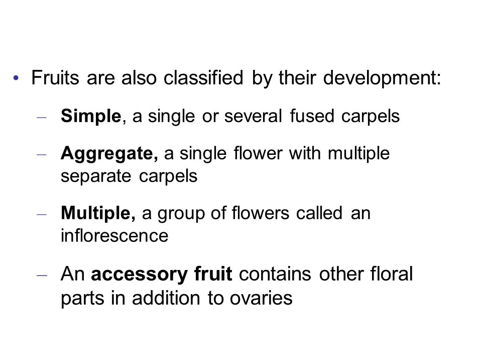Fruits are also classified by their development: