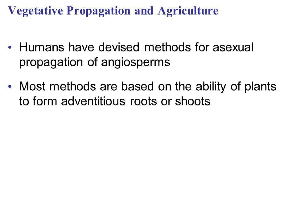 Vegetative Propagation and Agriculture
