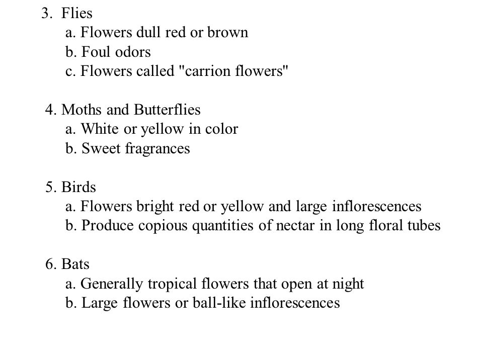 3. Flies a. Flowers dull red or brown. b. Foul odors. c. Flowers called carrion flowers 4. Moths and Butterflies.