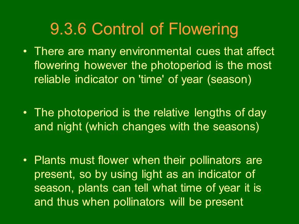9.3.6 Control of Flowering