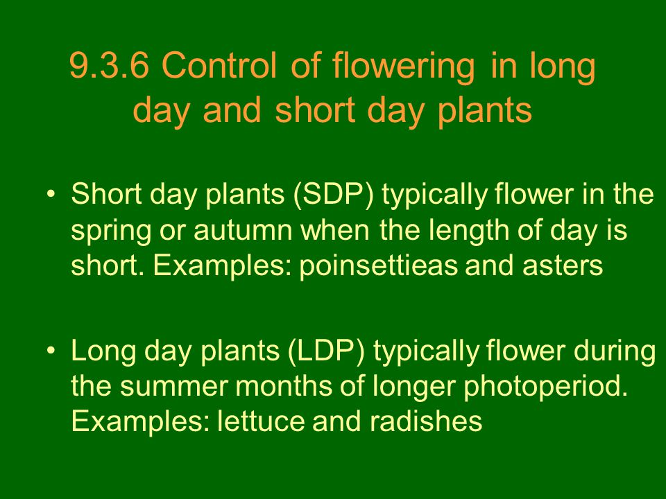 9.3.6 Control of flowering in long day and short day plants