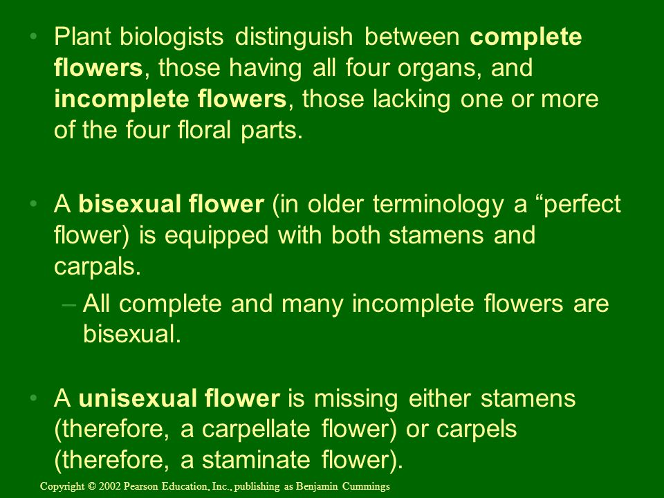 All complete and many incomplete flowers are bisexual.