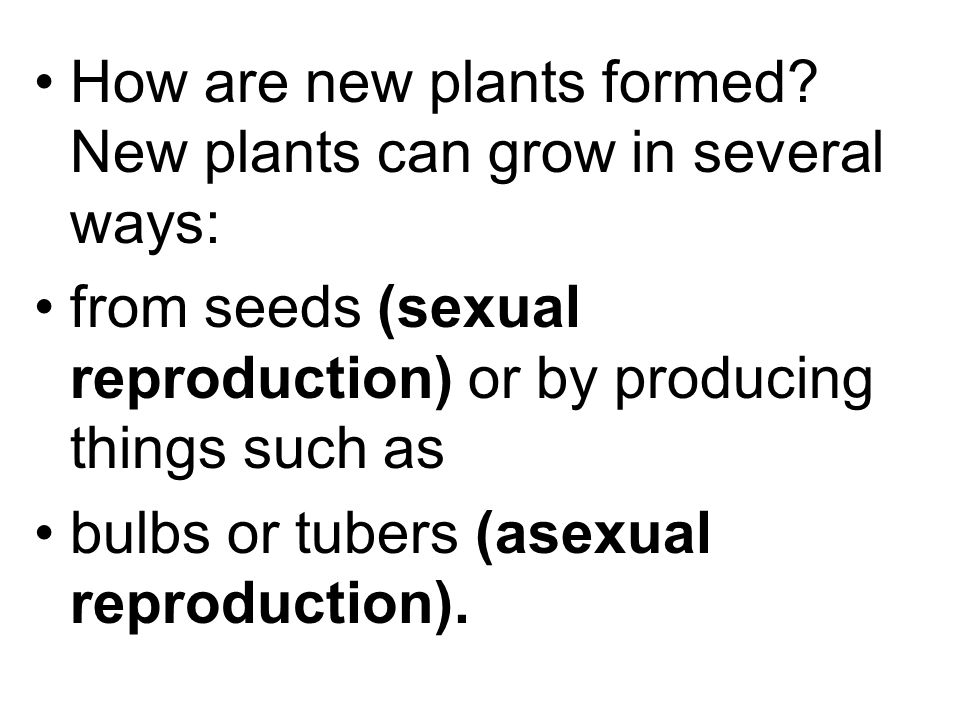 How are new plants formed New plants can grow in several ways: