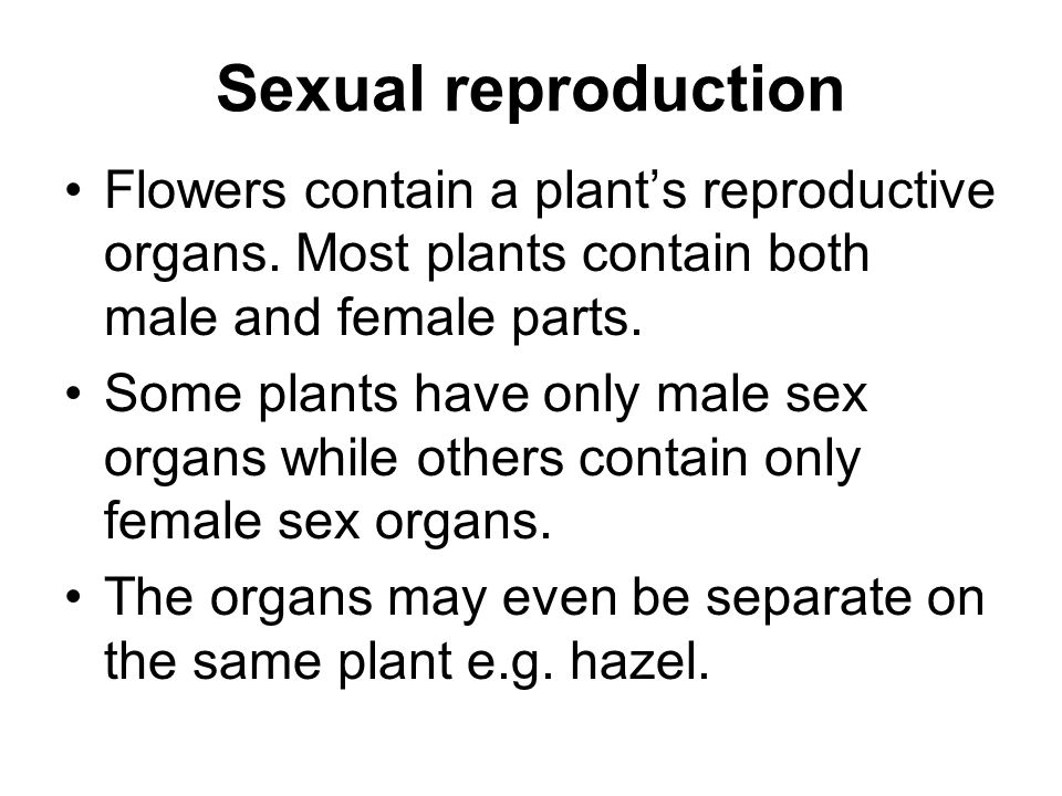 Sexual reproduction Flowers contain a plant's reproductive organs. Most plants contain both male and female parts.