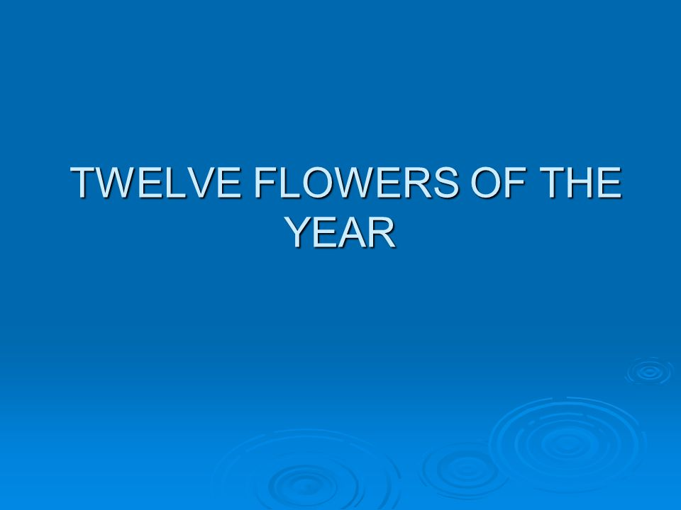TWELVE FLOWERS OF THE YEAR