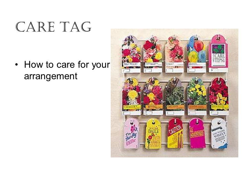 Care Tag How to care for your arrangement