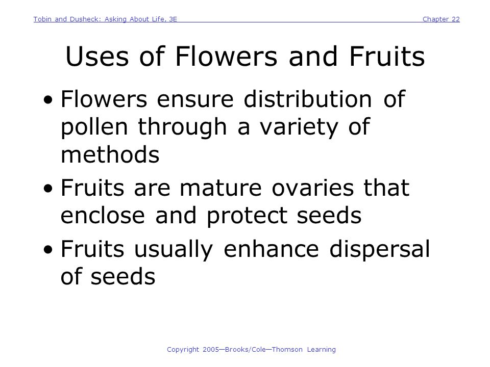 Uses of Flowers and Fruits