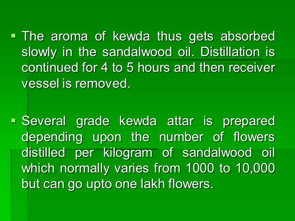 The aroma of kewda thus gets absorbed slowly in the sandalwood oil