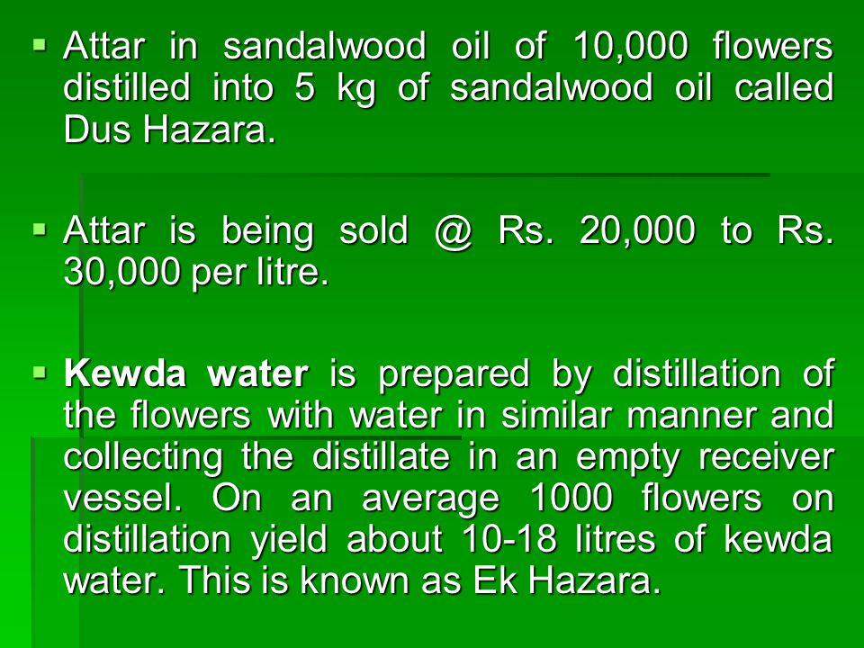 Attar in sandalwood oil of 10,000 flowers distilled into 5 kg of sandalwood oil called Dus Hazara.