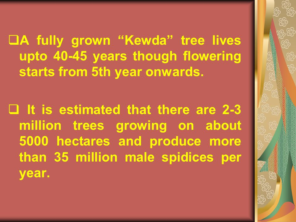 A fully grown Kewda tree lives upto 40-45 years though flowering starts from 5th year onwards.