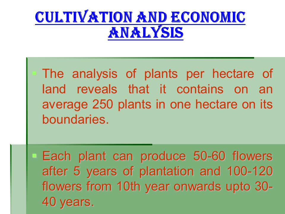 CULTIVATION AND ECONOMIC ANALYSIS
