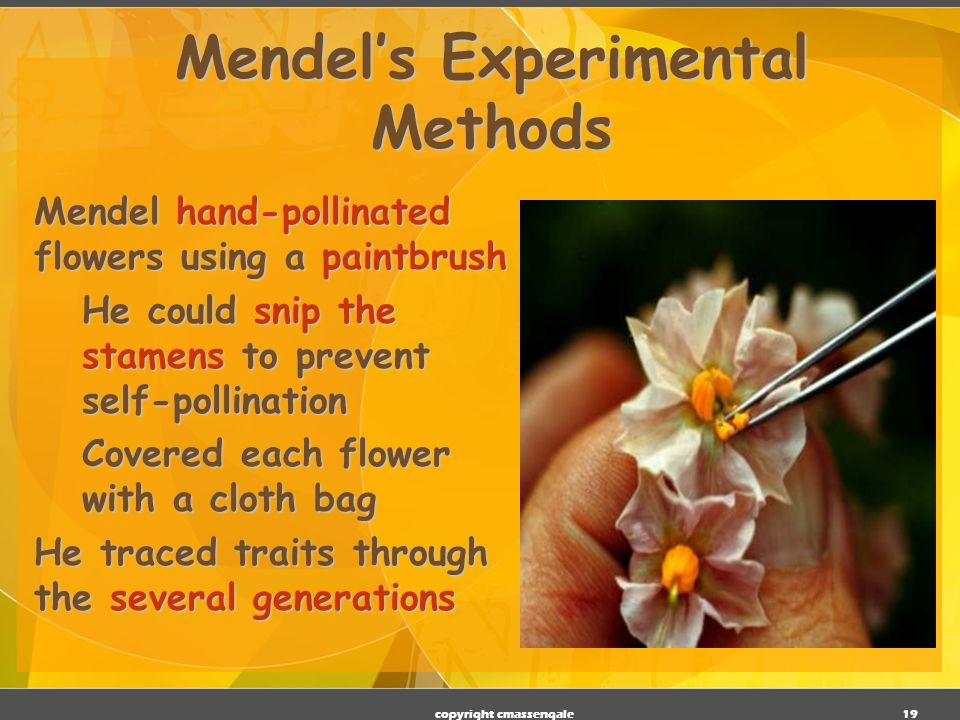 Mendel's Experimental Methods