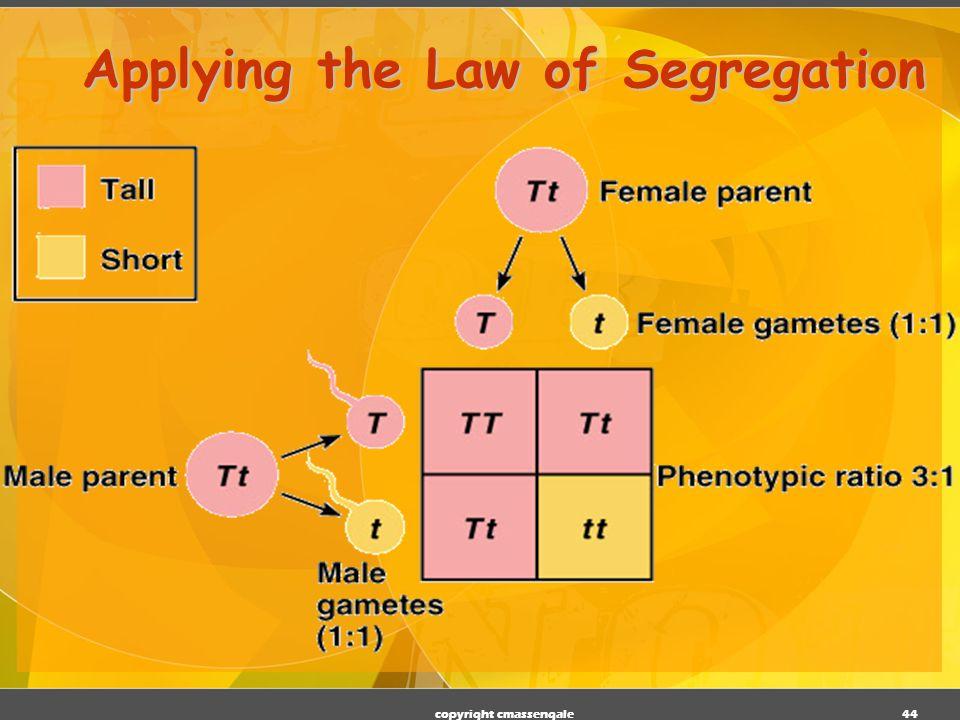 Applying the Law of Segregation