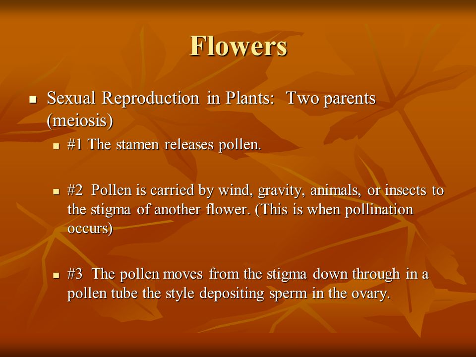 Flowers Sexual Reproduction in Plants: Two parents (meiosis)