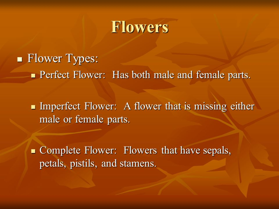Flowers Flower Types: Perfect Flower: Has both male and female parts.