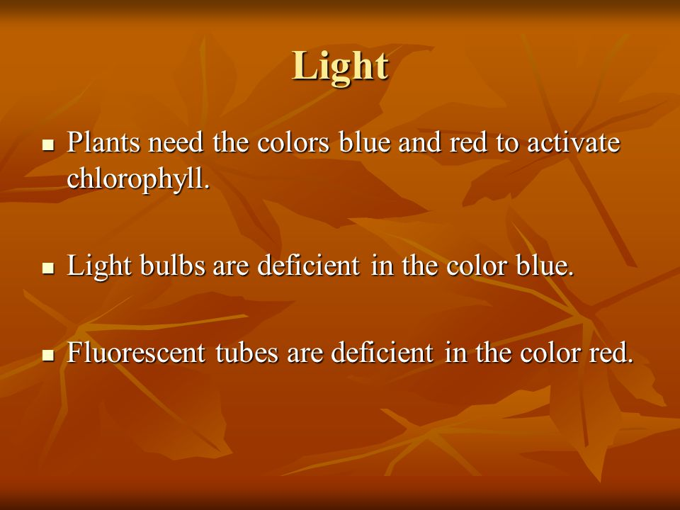 Light Plants need the colors blue and red to activate chlorophyll.