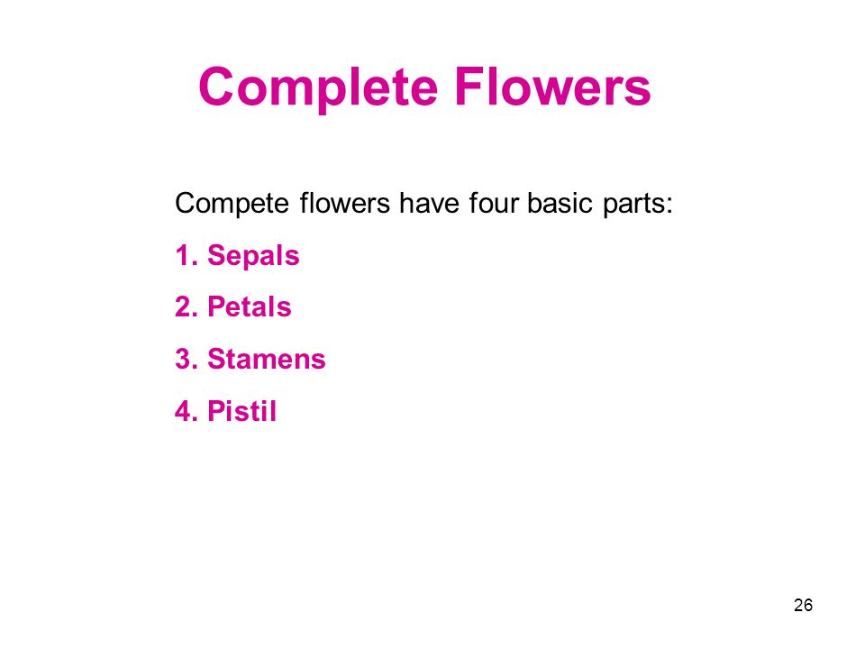 Complete Flowers Compete flowers have four basic parts: Sepals Petals