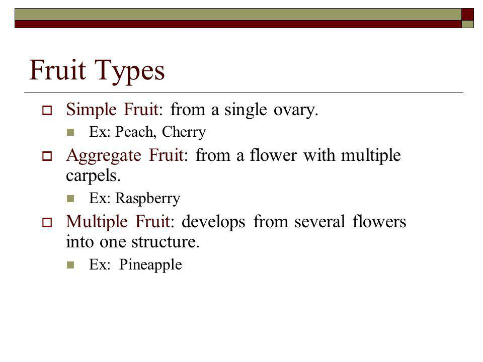 Fruit Types Simple Fruit: from a single ovary.