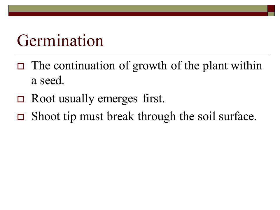 Germination The continuation of growth of the plant within a seed.