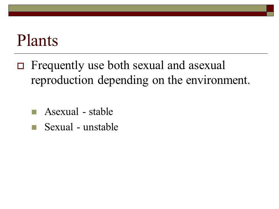 Plants Frequently use both sexual and asexual reproduction depending on the environment. Asexual - stable.