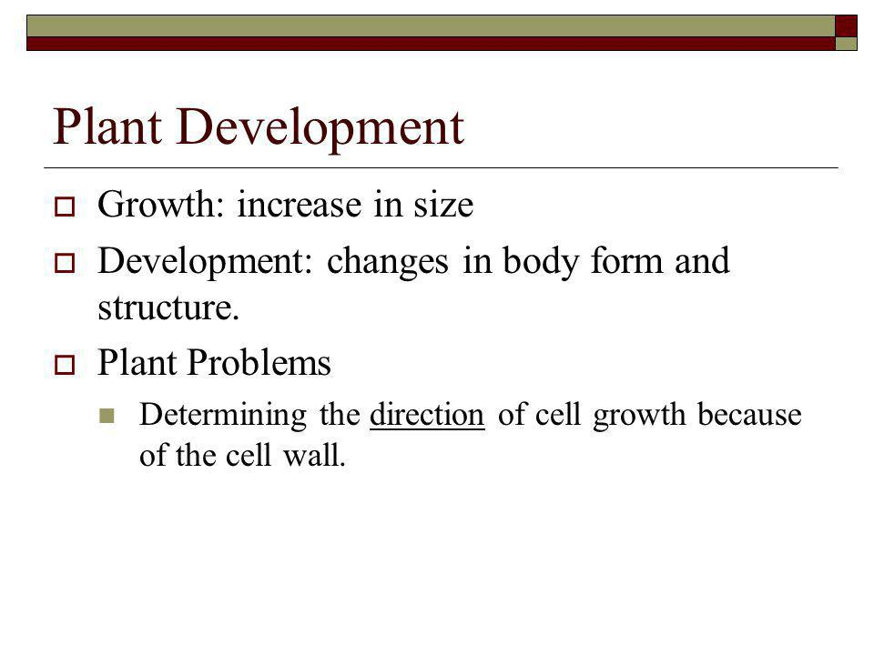 Plant Development Growth: increase in size