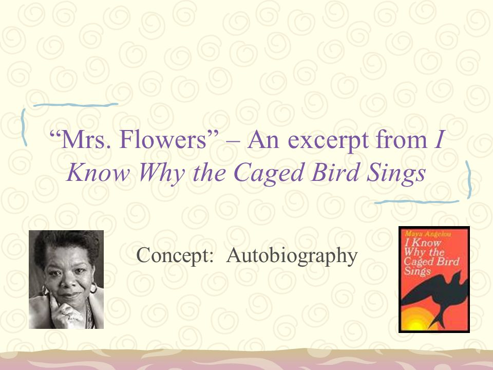 a biography of maya angelou in i know why the caged bird sings